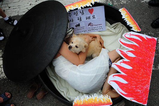 Koreans protest eating dog meat in Seongnam