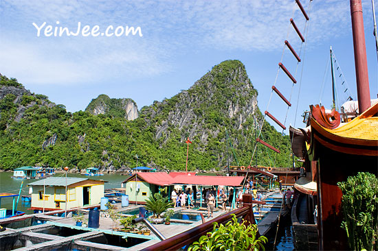 Floating fish farm at Halong Bay, Vietnam