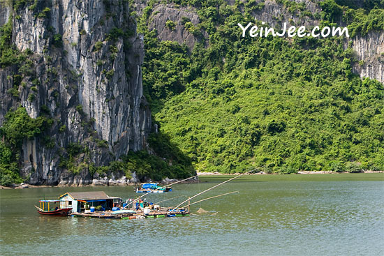 Floating fish house at Halong Bay, Vietnam