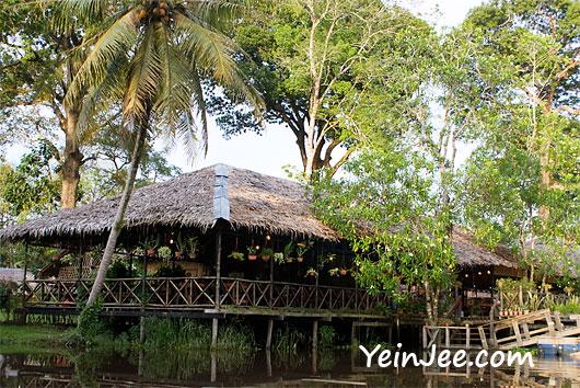 Borneo Proboscis River Lodge in Klias Wetland, Sabah