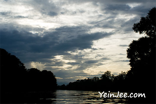Morning at Klias Wetland in Sabah, Malaysia
