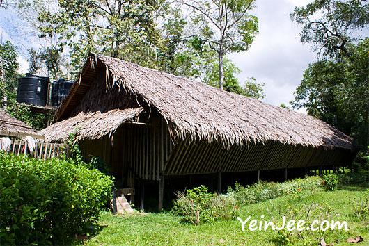 Rungus long house at Borneo Proboscis River Lodge in Klias Wetland, Sabah