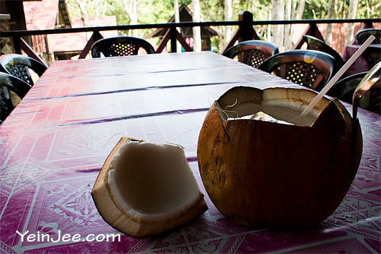 Fresh coconut drink at Telaga Tujuh, Langkawi, Malaysia