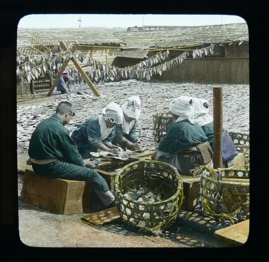 Dried fish vintage photo by T.Enami
