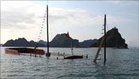 Halong Bay boat accident