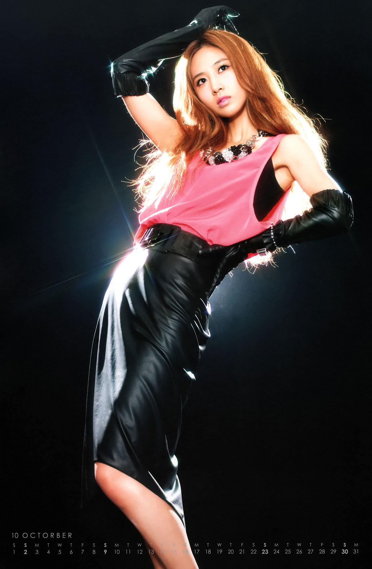 Girls Generation 2011 Tour Calendar
