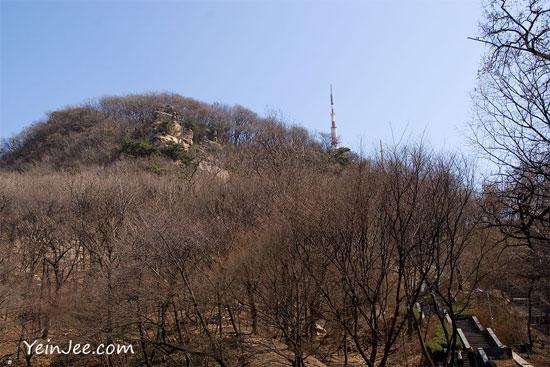 Namsan nature landscape