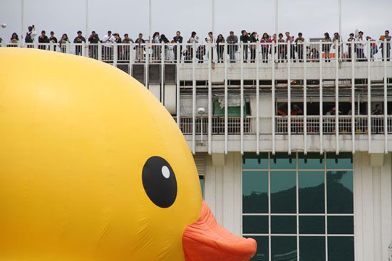 Giant rubber duck in Hong Kong