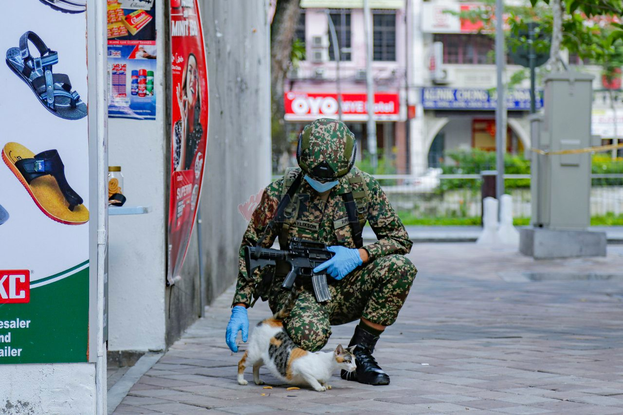 Malaysia Armed Forces and cute cat during Malaysia movement control