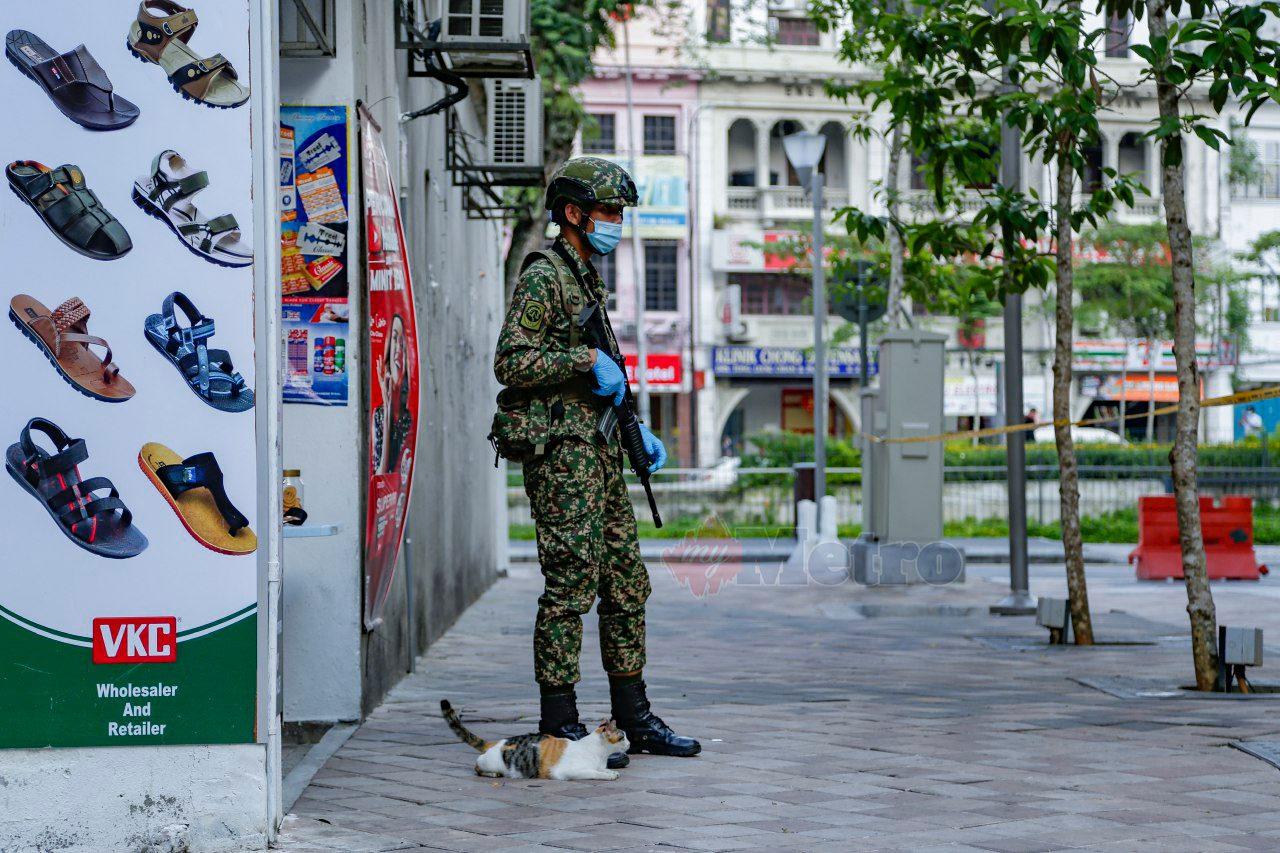 MCO Angkatan Tentera Malaysia dan kucing Kuala Lumpur